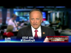 Rep. Steve King on why Congress is challenging John Boehner