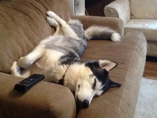 Whole Couch Is Mine
