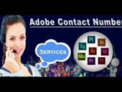 How contact Adobe help and support phone number?