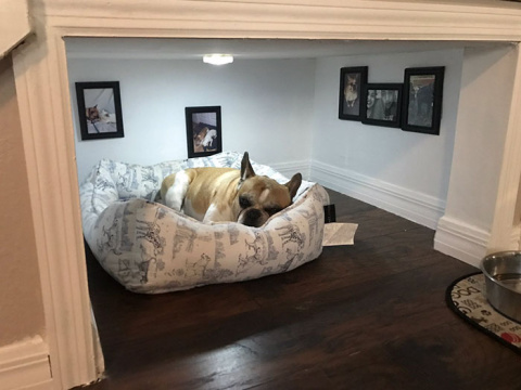 Man Builds Entire Bedroom Un…