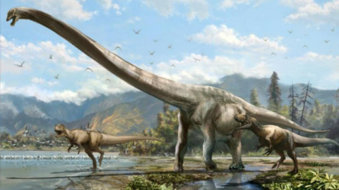 """Dragon"" Dinosaur in China Was 50 Feet Long, Had Most Epic Neck Ever"