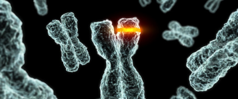 Biological error occurs in two-thirds of cancer cases