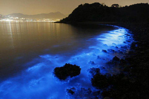 A blue glow of Hong Kong seas