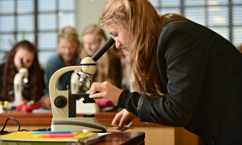 Science A level practicals face axe despite barage of criticism, says MP