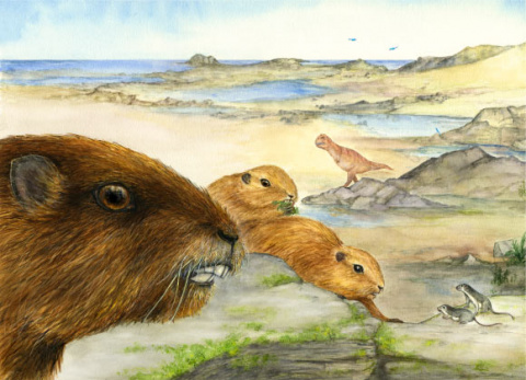 Vintana sertichi: Ancient Groundhog-Like Mammal Discovered in Madagascar